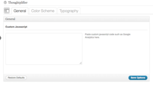 Thoughtplifier Theme Options Add Custom Script