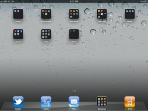 iPad Homescreen