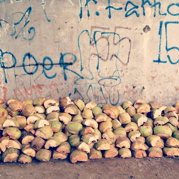 Shells of Coconuts