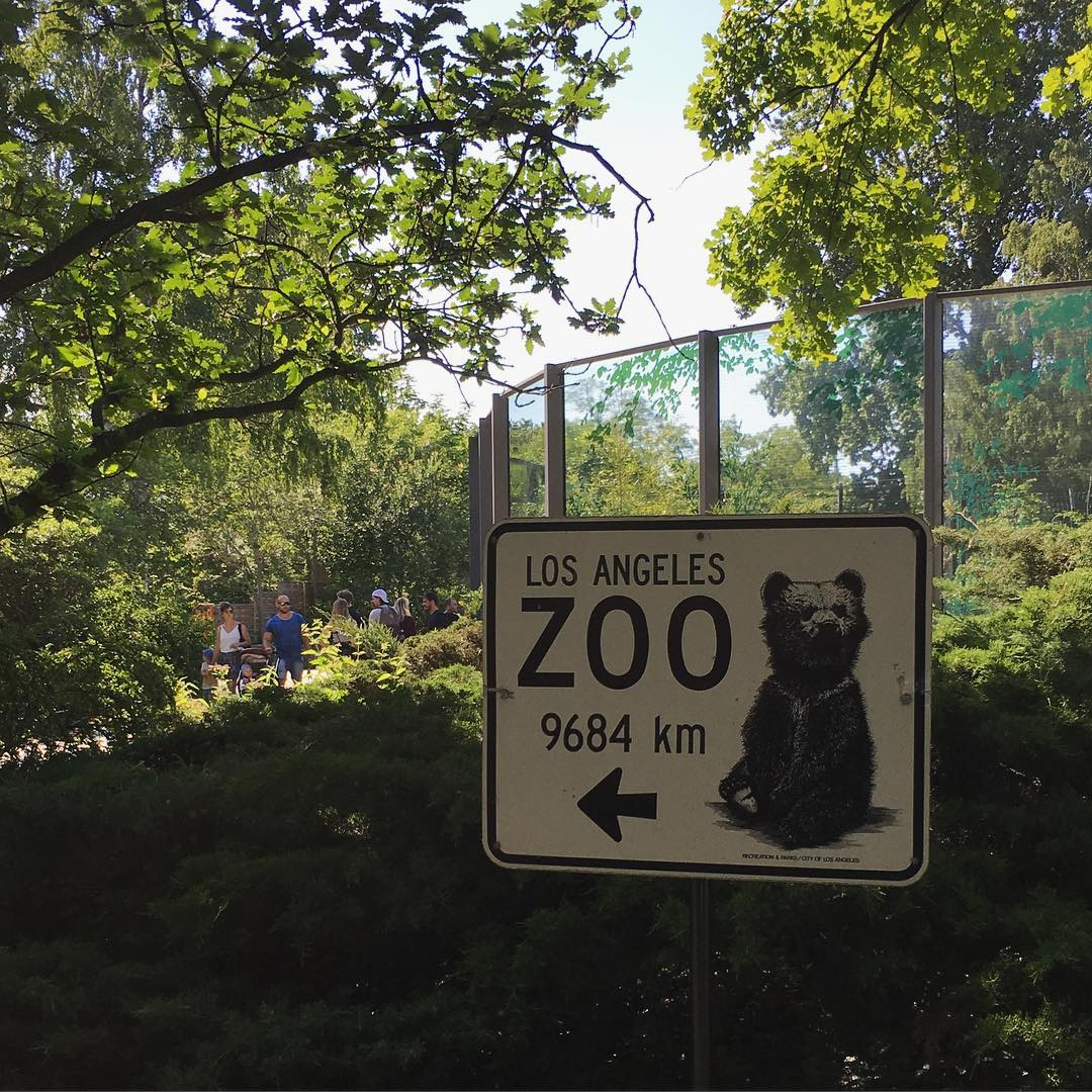 Well played berlin zoo, well p…