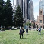 A park in the middle of skyscr…