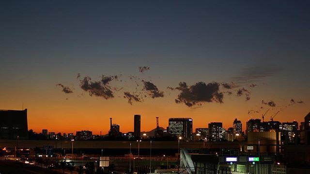Before tokyo light fades away …