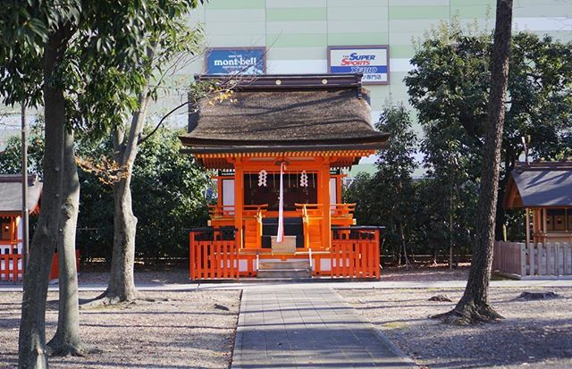We mistook this shrine beside …