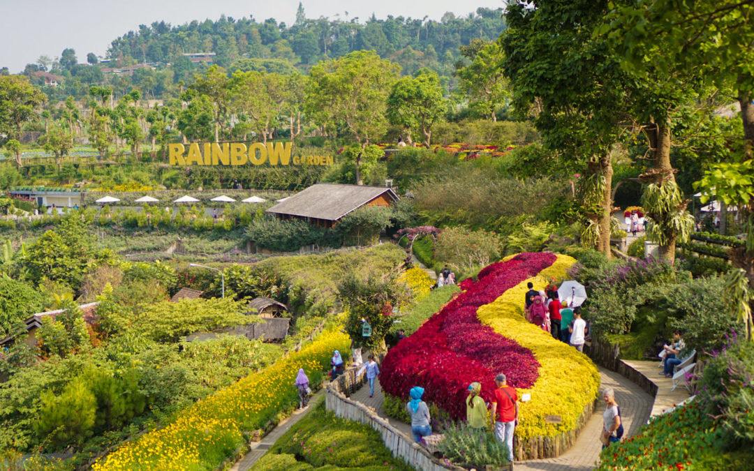 An Afternoon in Rainbow Garden